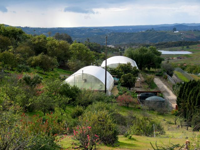 Archi's Acres. Two hydroponic green houses and avocado tree orchards framed by the 'Back 40' of Camp Pendleton in the background.