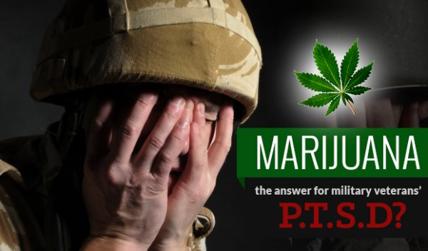 cannabis to treat ptsd