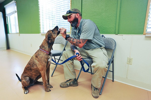 Service Dogs and Veterans