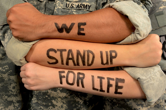 Veteran Suicides
