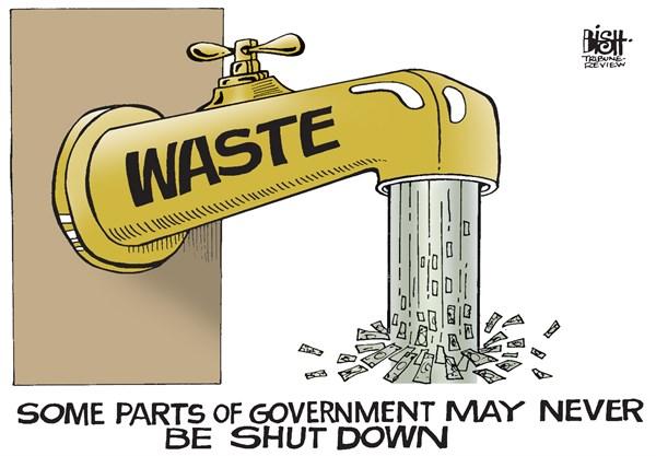 govt_waste